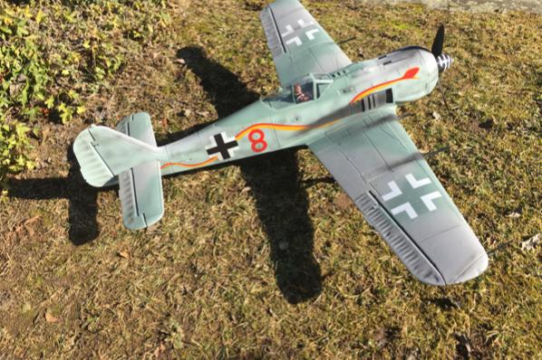 "Freewing FW-190 ""Butcherbird"""